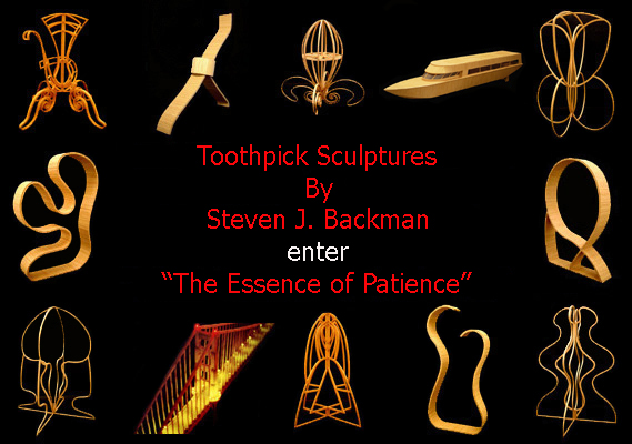 Toothpick Sculptures By Steven J. Backman-The Essence of Patience